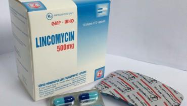 vien-nang-cung-lincomycin-500-mg